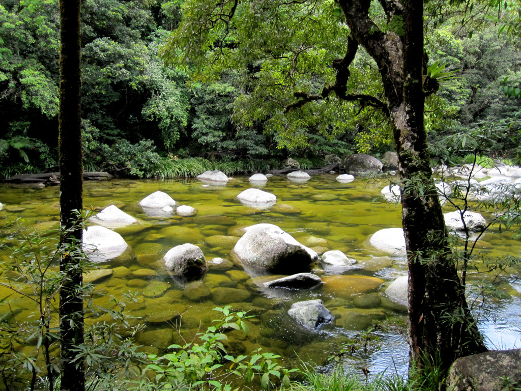 Mossman Gorge, Daintree Forest