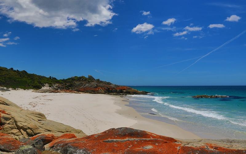Walk Tasmania, Bay of Fires – Peter Gawthrop