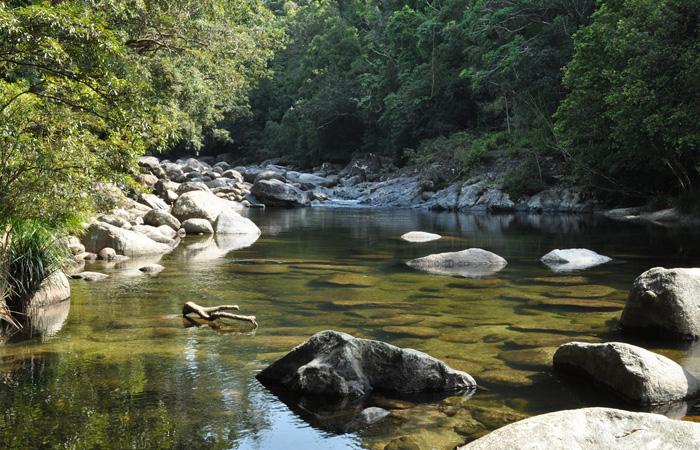 Cairns,-Mossman-Gorge---Saldesalsal