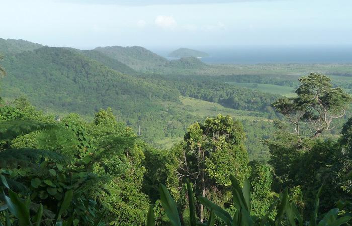 Cairns,-the-hills-at-Cape-Tribulation---Fotini-et-Nicolas