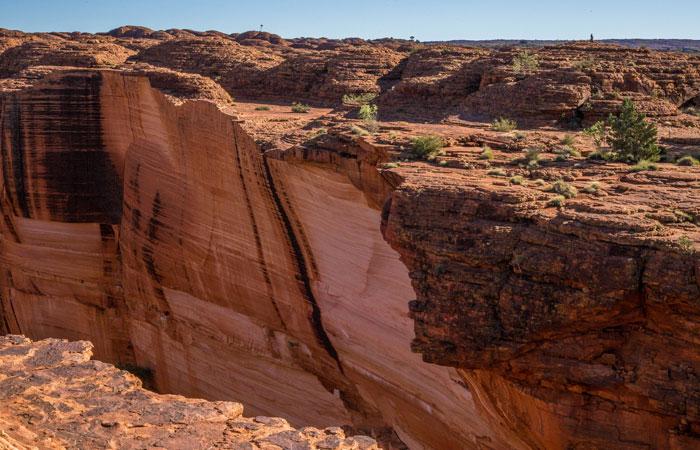 Is Canyon Tours Legit