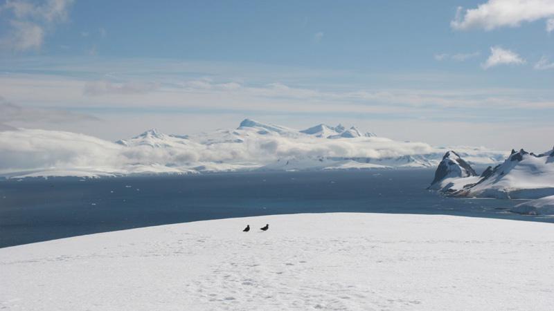 Antarctica---Tak