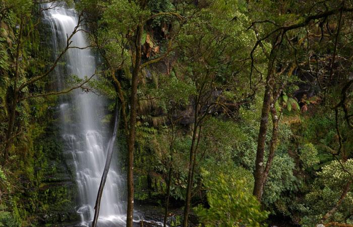 Great-Ocean-Road-Erskine-Falls---Ed Dunens