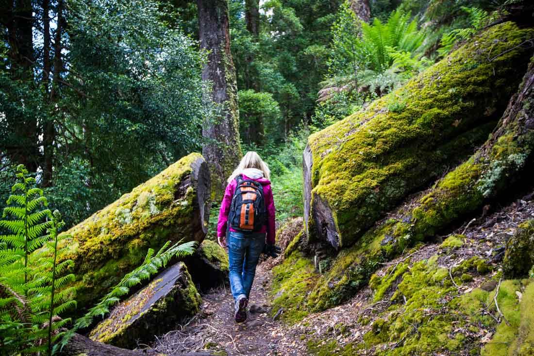 Australia's 10 Most Epic Walks and Hikes | Experience Oz |Hiking Australia