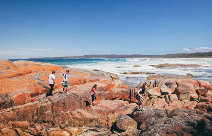 Tasmania-group-tour-bay-of-fires-walk---Adventure-Tours