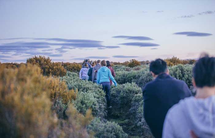 Tasmania Lake St Clair walk hike - Adventure Tours