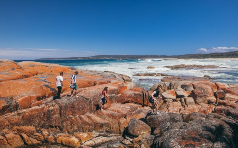 Travellers at Bay of Fires, Tasmania
