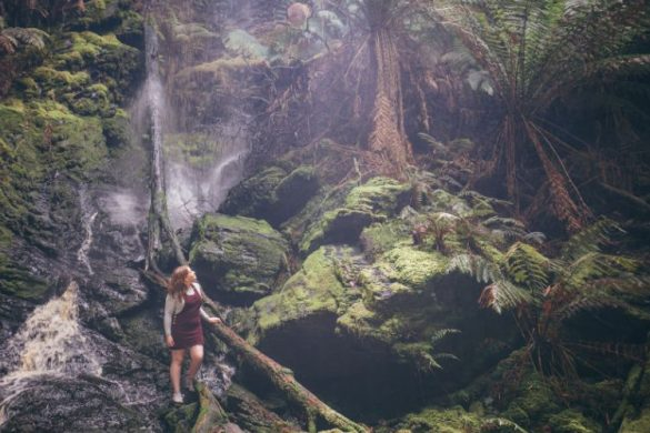 Person walking through the rainforest sin tasmania