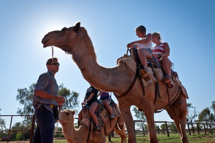 Uluru is the best place for camel riding