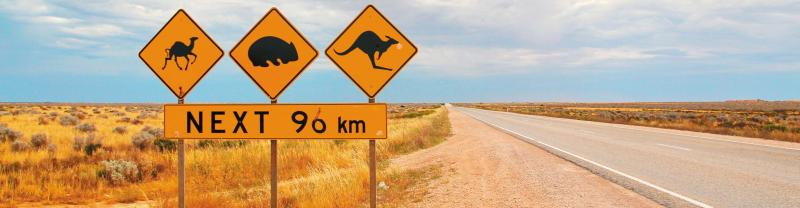 Camel, Koala and Kangaroo sign on the Nullabor
