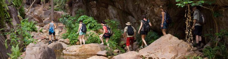 Group walking through rainforest in Western Australia
