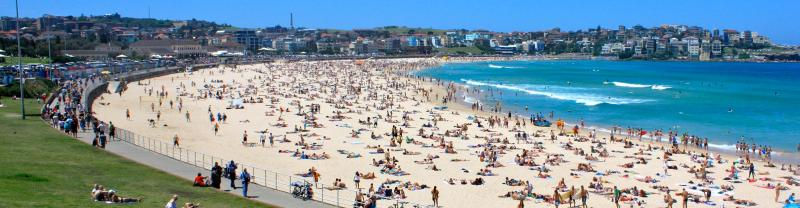Sydney Bondi Beach Surfing Summer New South Wales