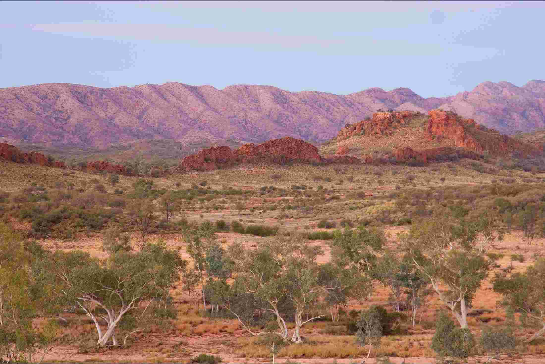 Vegetation/biome analogues of Australia (or how other places in ...