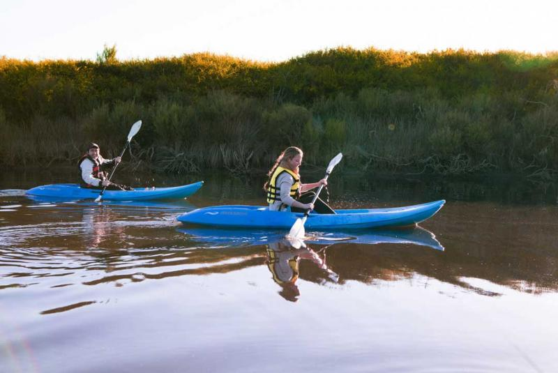 Go kayaking on the Harriet River, Kangaroo Island