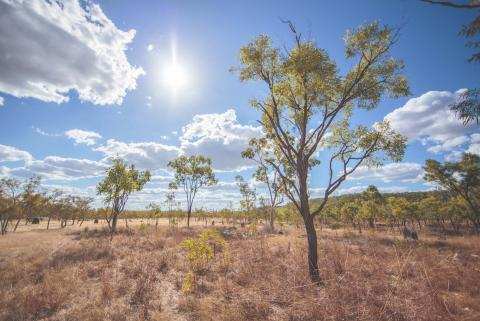 Beautiful landscape in Olkola Country in the Queensland Outback